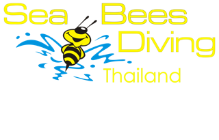 Sea Bees Diving Khao Lak Co., Ltd.